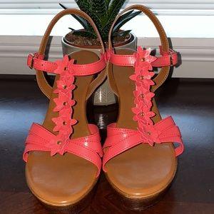 Contesa an Italian Shoemakers